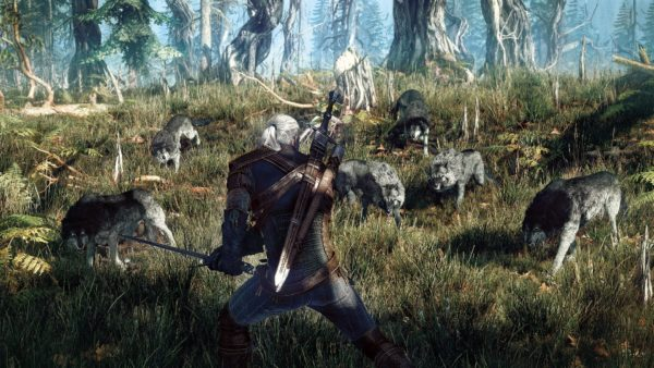 The_Witcher_3_002